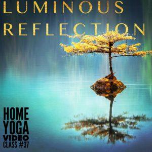 luminous reflection hyvc