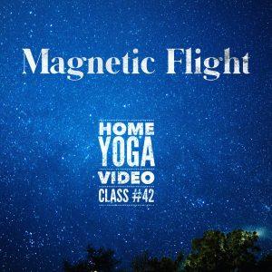 magnetic flight